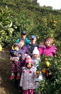 須崎市安和ポンカン ヤマデ農園